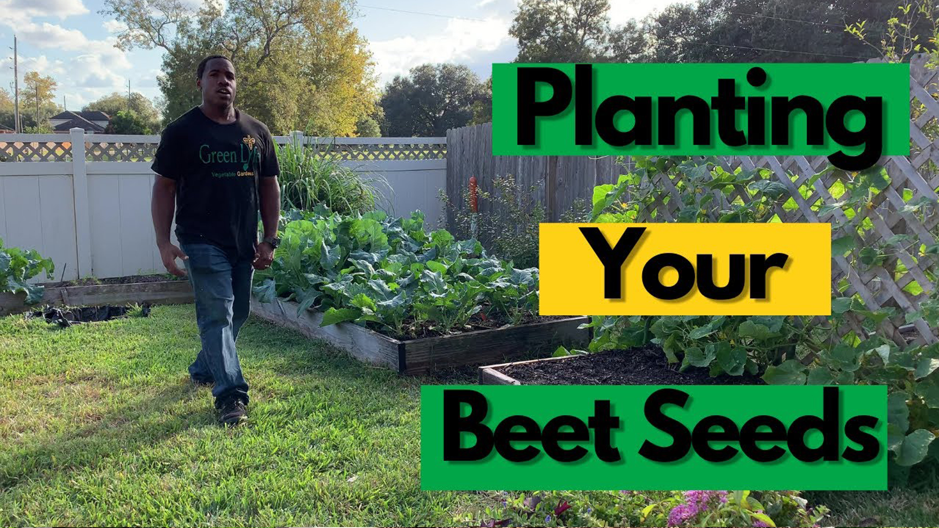 How To Plant Your Beet Seeds