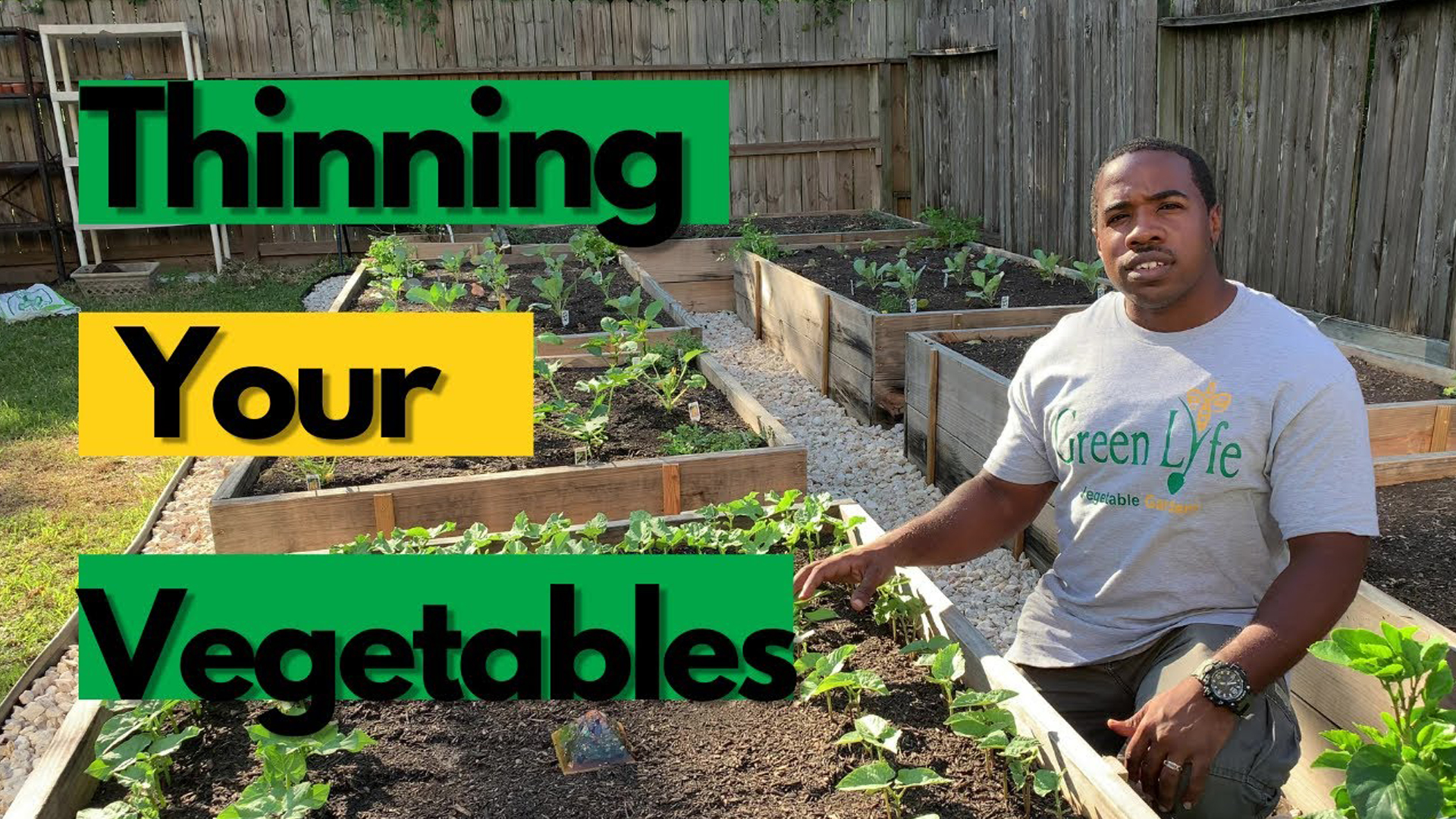 Thinning Your Vegetable Plants