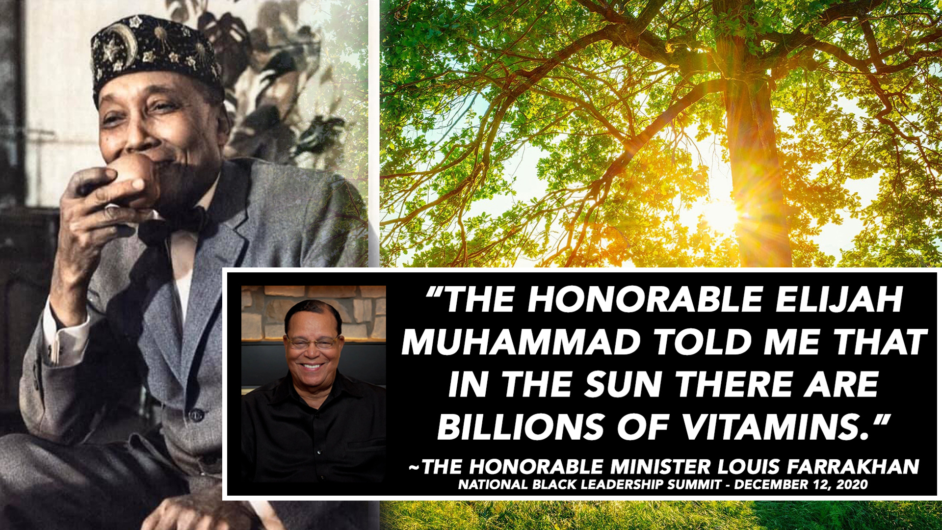 Farrakhan: We Need More Vitamin D, Not A Vaccine